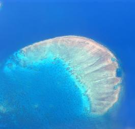 Великий барьерный риф, Австралия