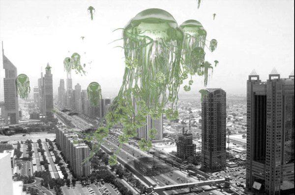 Москва заняла первое место по уровню улучшения экологии