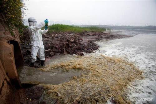 Чистая одежда, грязная вода: Волокна в океане