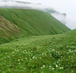 Красивейшие места на Земле: Командорские острова (30 фото)