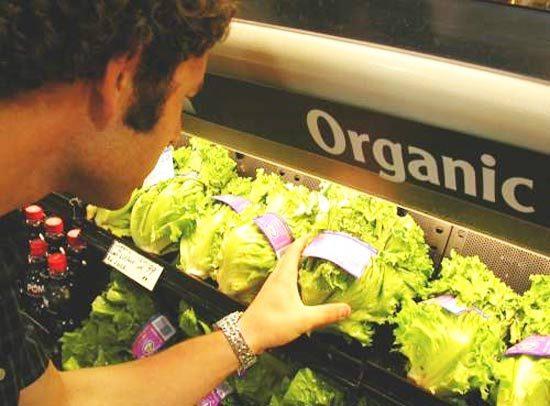 Органические продукты питания: здоровье или кошелек?