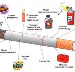 Что внутри сигарет и как они влияют на организм?