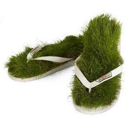 Зеленая трава вокруг нас. Идеи для дизайна.