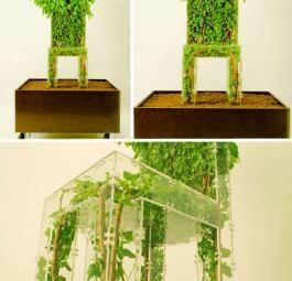 Живая мебель у нас дома. Экология и дизайн