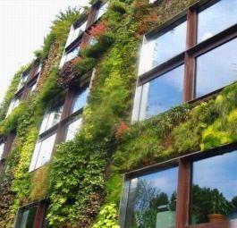 Экодизайн: Вертикальные живые сады Патрика Бланка