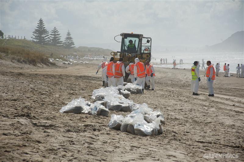 Волонтеры Гринпис помогают очистить северо-восточное побережье Новой Зеландии от мазута