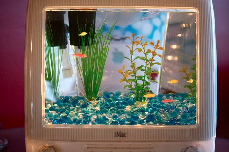 Пузыреобразные яркие компьютеры iMac становятся стильными аквариумами Macquarium