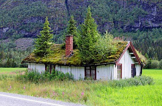 Красивые норвежские зеленые крыши