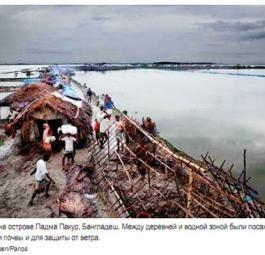 Ежегодник ООН 2010: Бедствия и конфликты, повлиявшие на окружающую среду