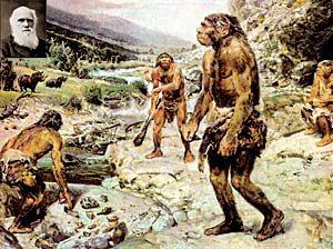Почему американцы не любят Дарвина