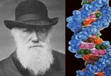 Дарвинизм и генетика